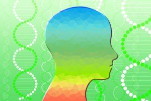 体内での活性酸素の働き