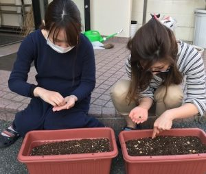 種を植える寺嶋と前川