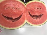 笑うスイカ